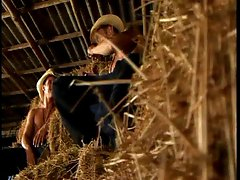 Muscled handsome cowboys making a steemy gay orgy in the barn