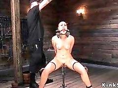 Zippered shaved bondage slave rides Sybian and feels pain BDSM